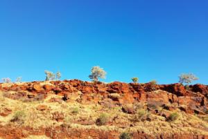 Pilbara Mannwest